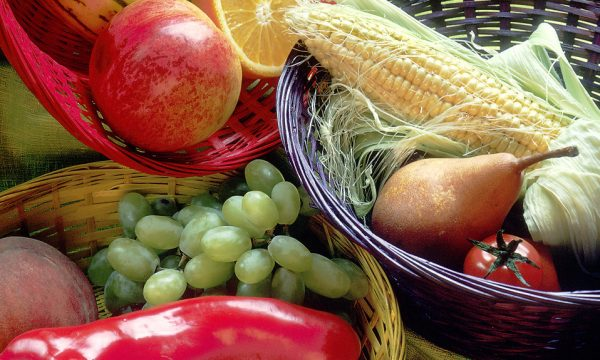 Vegetarian Nutrition Resources