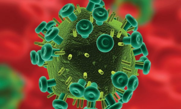 Learn The Facts About HIV and Aids